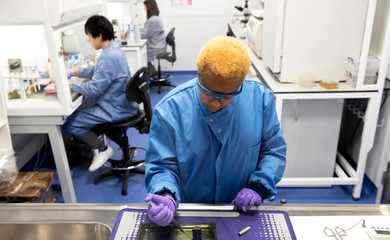 Students working in a medical lab