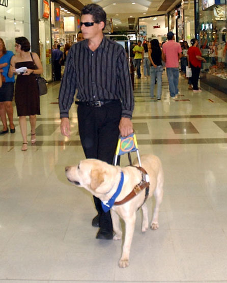 Visually impaired man with assistance dog